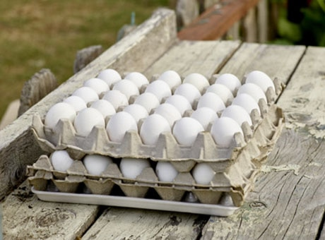 Cartons of perishable eggs sit on a table