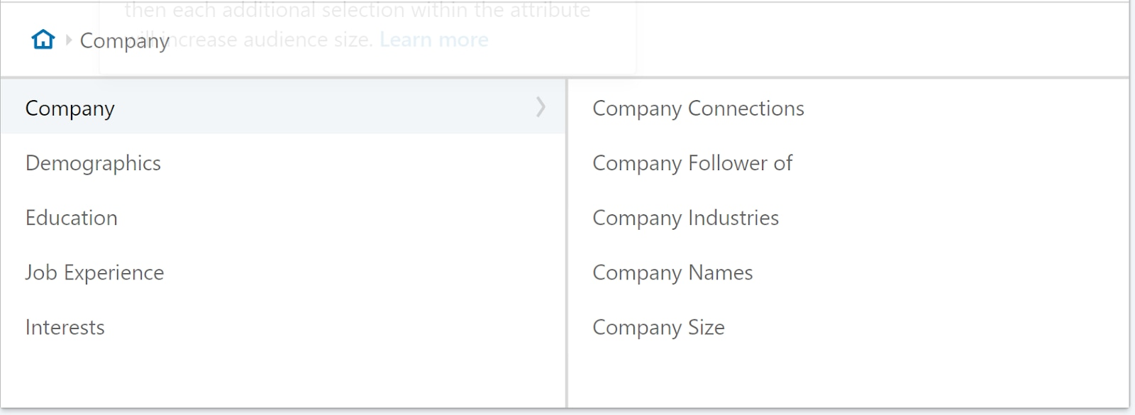 LinkedIn advertising organization.
