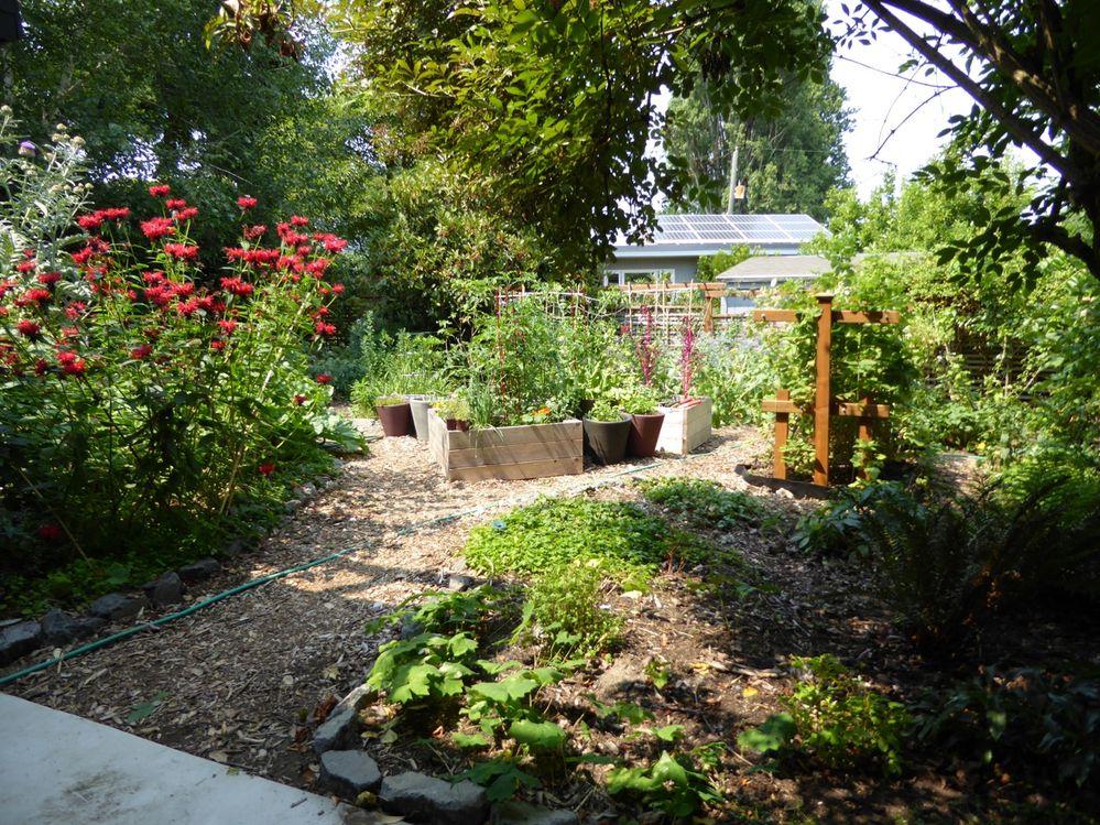 OASIS_garden.jpg