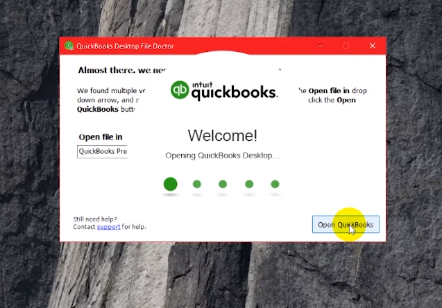 QuickBooks File Doctor 8.png