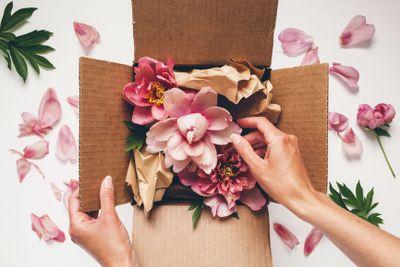 flowerbox.stocksy.jpg