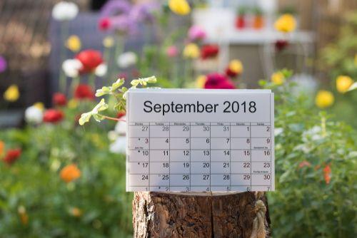 september.shutterstock.jpg