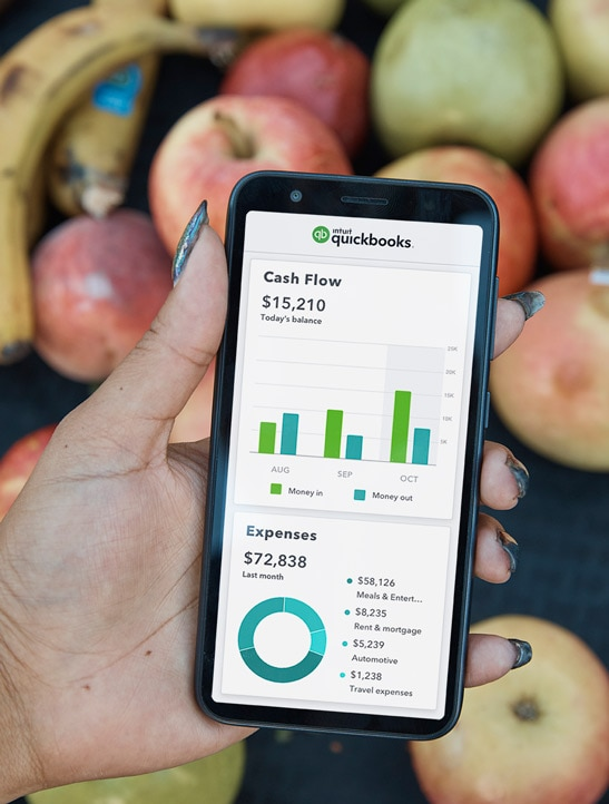 example of quickbooks mobile application