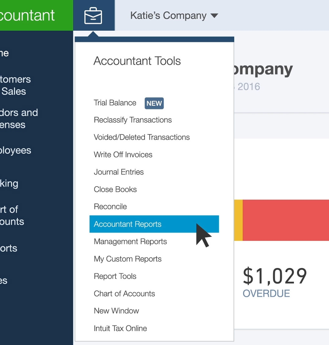 Using Accountant Reports And Templates